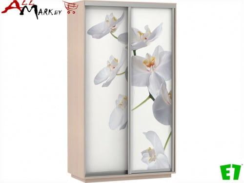 Готовый шкаф-купе Дуо Фото шириной 120 см, в цвете молочный дуб